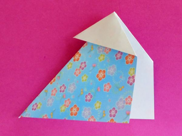 Origami outside reverse fold
