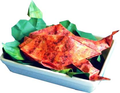 Origami Baked Chicken