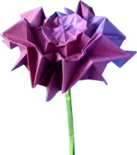 clipart picture of an origami dahlia