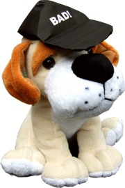 Dog with baseball cap