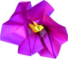 origami hollyhock clipart picture