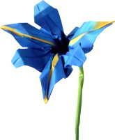 clipart of an origami iris