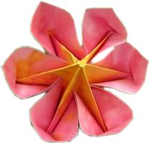 origami flower with six petals