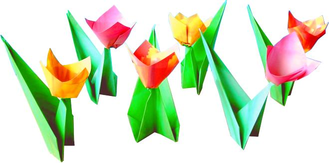 Colorful Origami Tulips