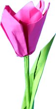 pink origami tulip clipart picture