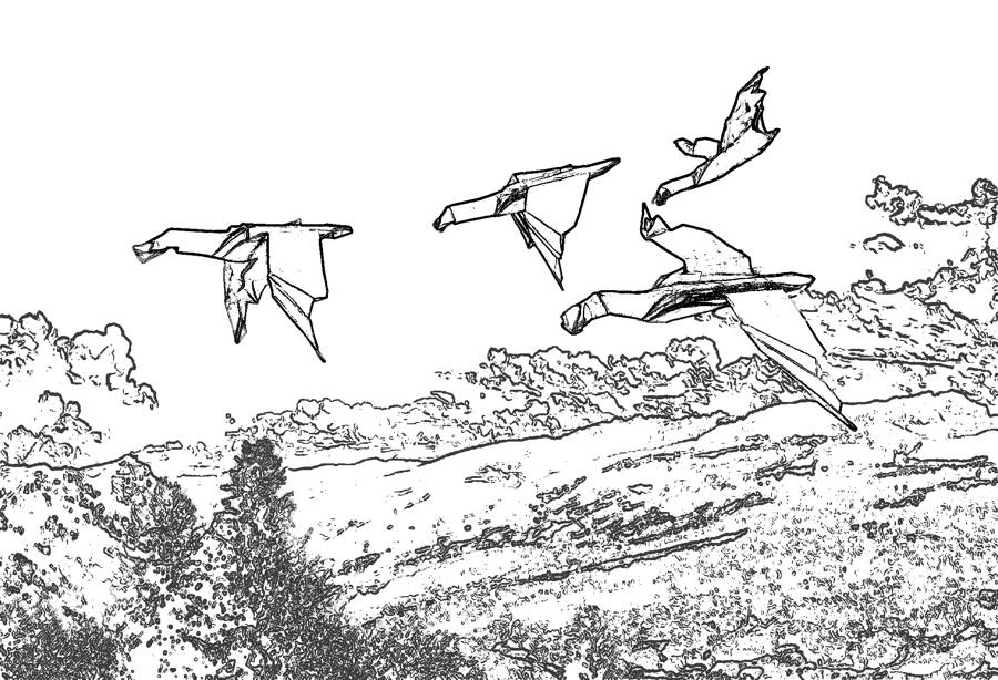 Flying Gooses coloring picture