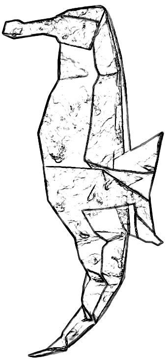 Kleurplaten Van Zeepaardjes.Joost Langeveld Origami Pagina