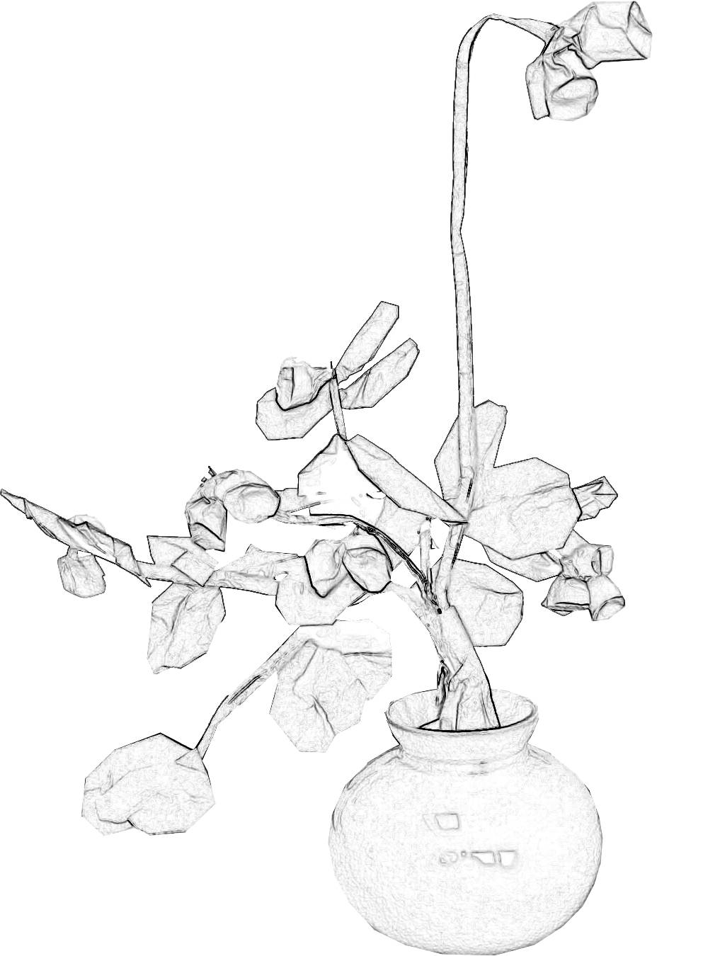 Colouringpicture of a Bonsai Origami Bell Flower
