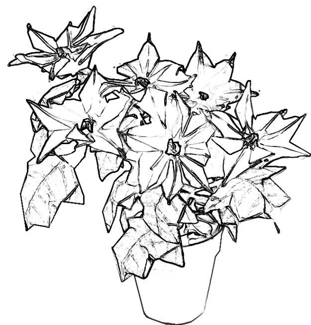Kleurplaten Kerst Ster.Joost Langeveld Origami Pagina
