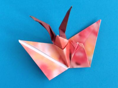 beautiful origami butterfly