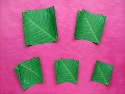 origami papers for folding a large houseplant