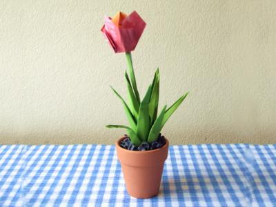 cute and modern looking origami tulip