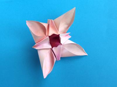 beautiful pink origami flower