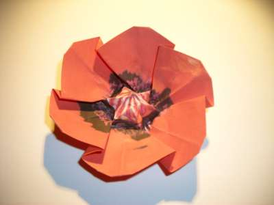 diagram for an origami poppy