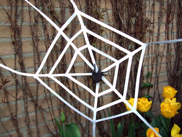 origami spider in a large web