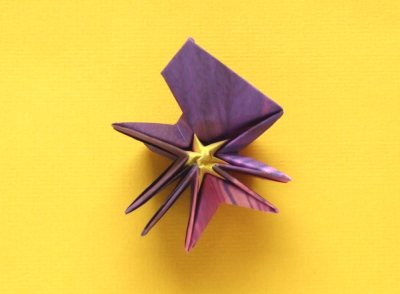 diagrams for folding an origami violet flower
