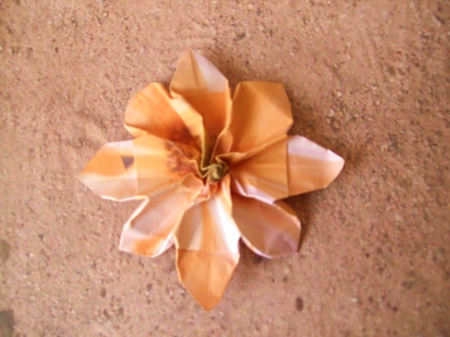 origami flower with 8 petals