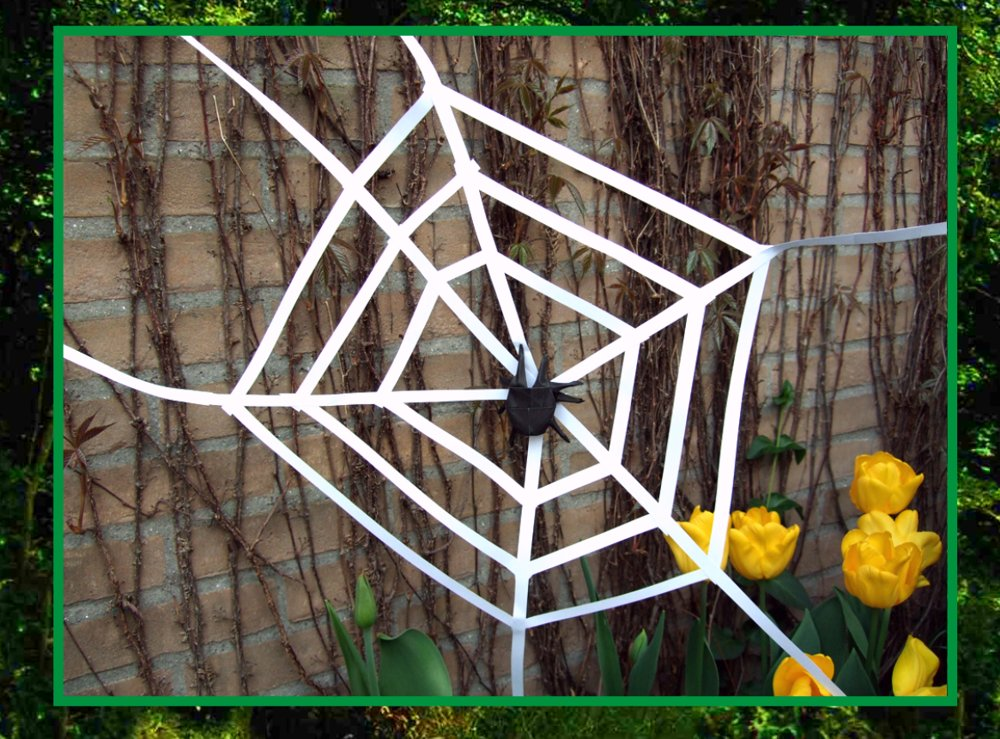 card with an origami spider in a large web