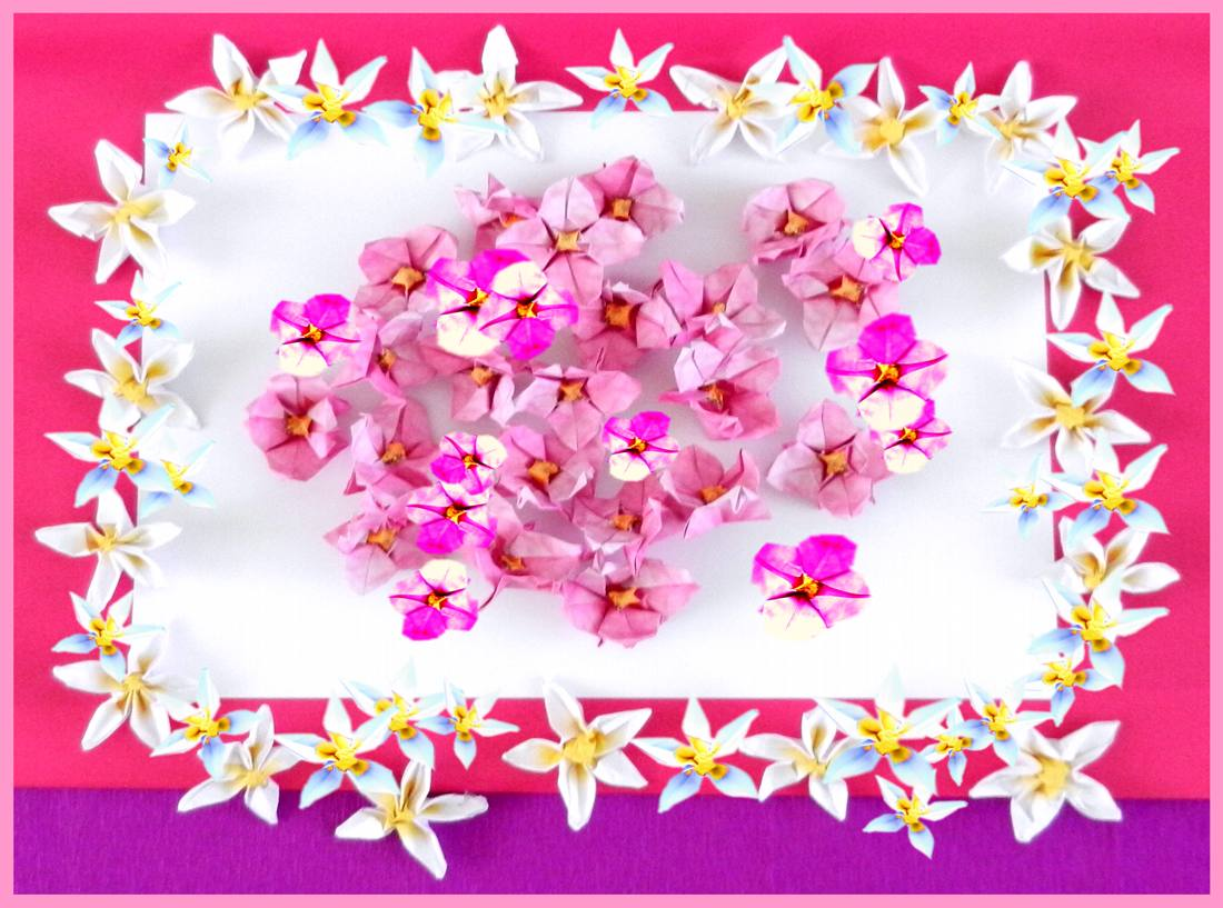 Origami Pink and White Flowers Card