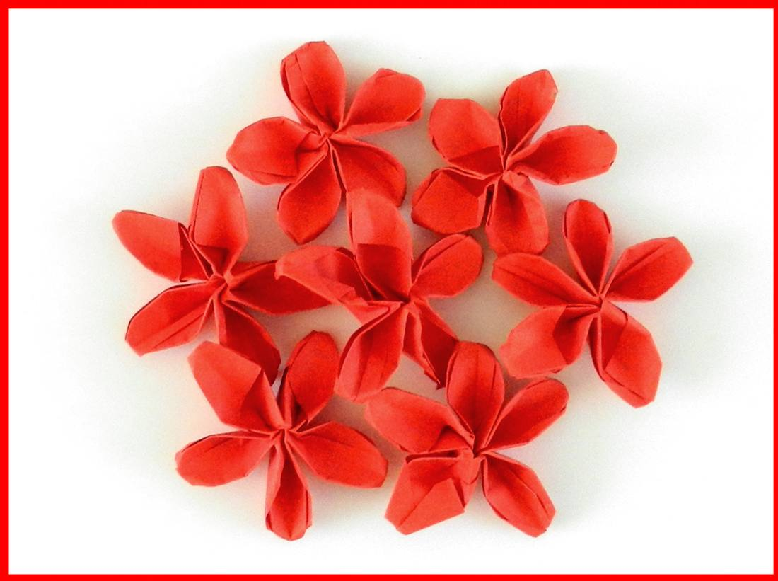 Card with red origami flowers