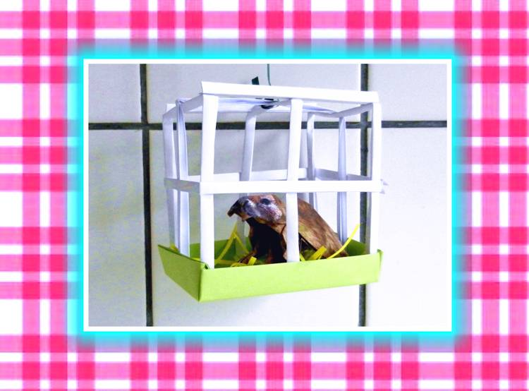 Kirigami Mini Pet Cage