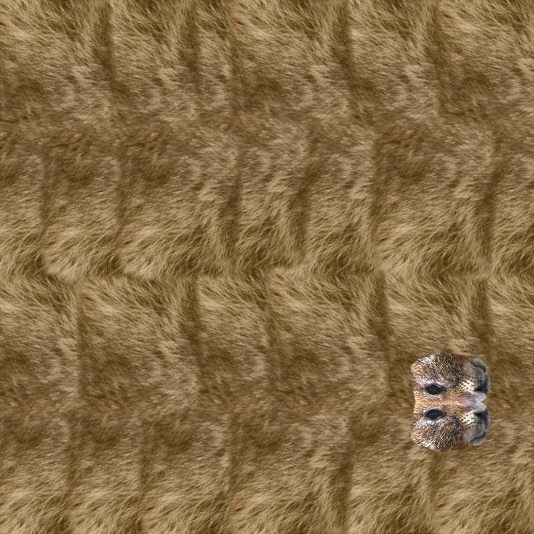 patterned paper for an origami marmot