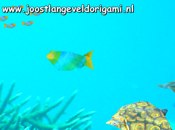 origami zeedieren screensaver